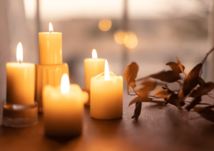 cremation services in Palm Harbor, FL