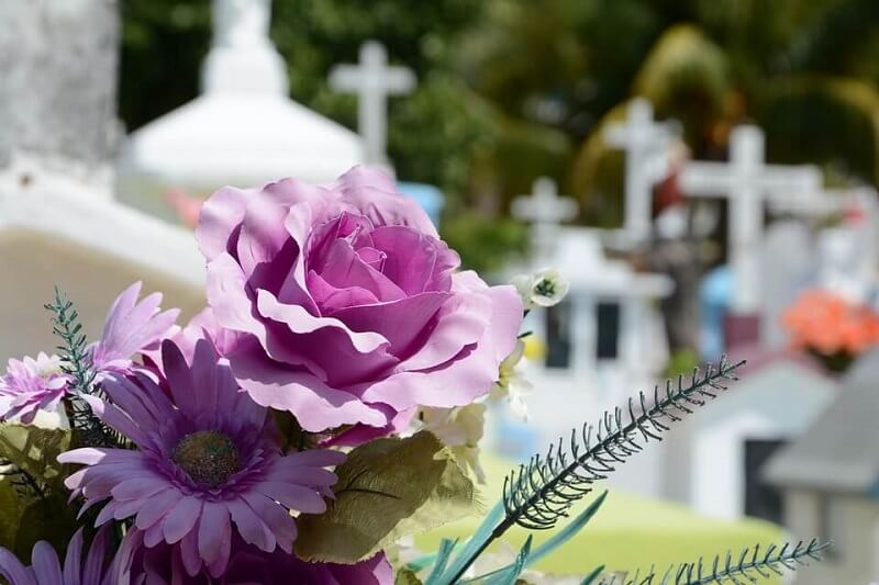 funeral homes in Palm Harbor FL